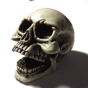 3//8x16 Large Skull Gear Shift Knob Hot Rat Street Rod American Made 11