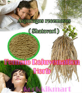 shatavari side effects men