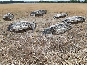 Goose-Decoys-12-Knockdown-Headless-Sillosock-Pinkfoot-Greylag-Canada