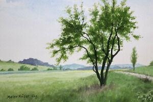 Gustav-Mueller-Aquarell-Landschaft-bei-Oberaltenbernheim-Juni-1978