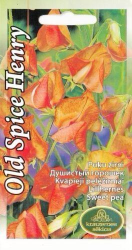 Semi di fiori dolci Peas Old Spice Henry eckford GIARDINO standard UE