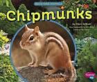 Chipmunks by Capstone Press (Hardback, 2015)