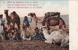 Postcard-Camel-Drivers-Stop-in-the-Desert-Egypt
