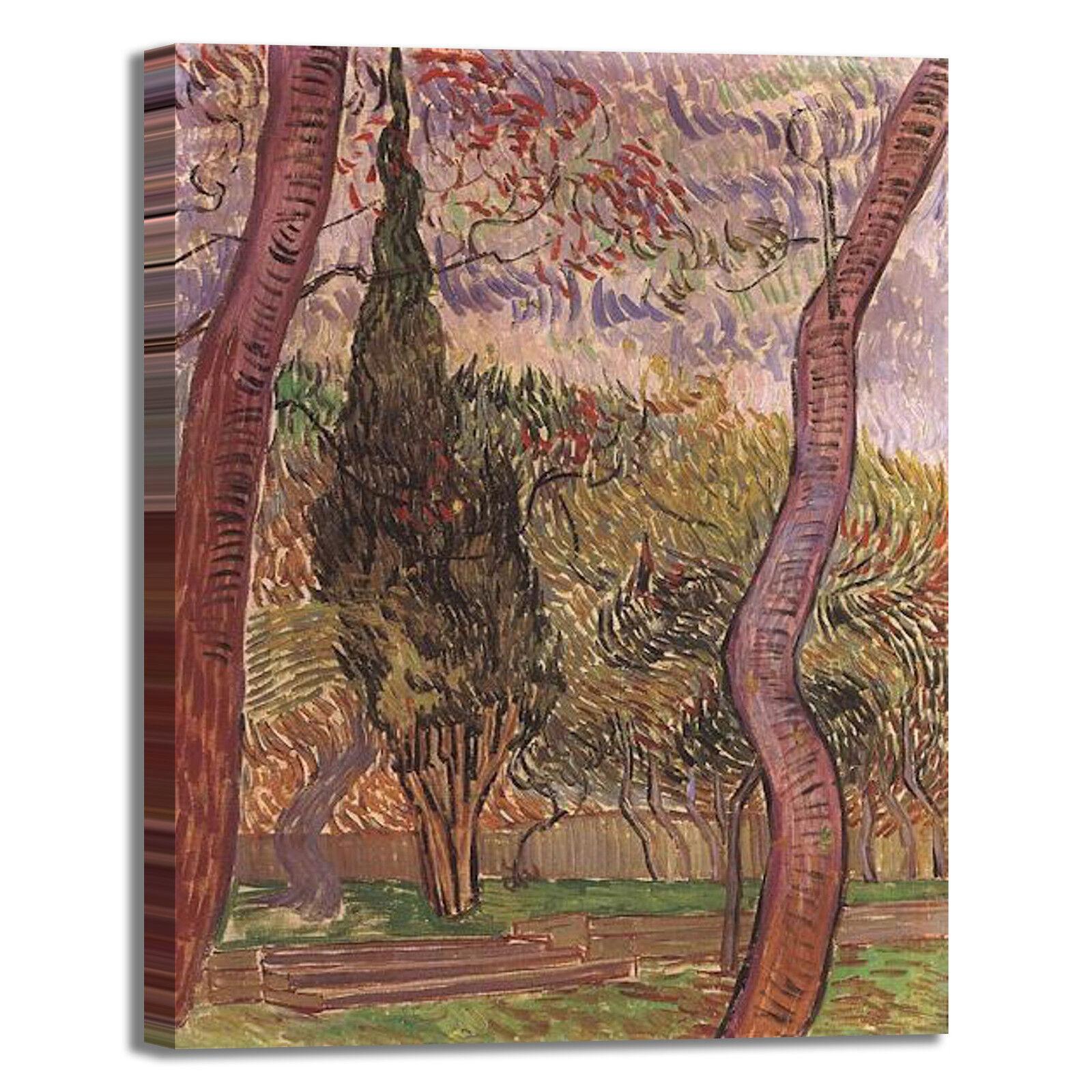 Van Gogh il giardino di Saint Paul quadro stampa stampa stampa tela dipinto telaio arRouge o casa 7645fc
