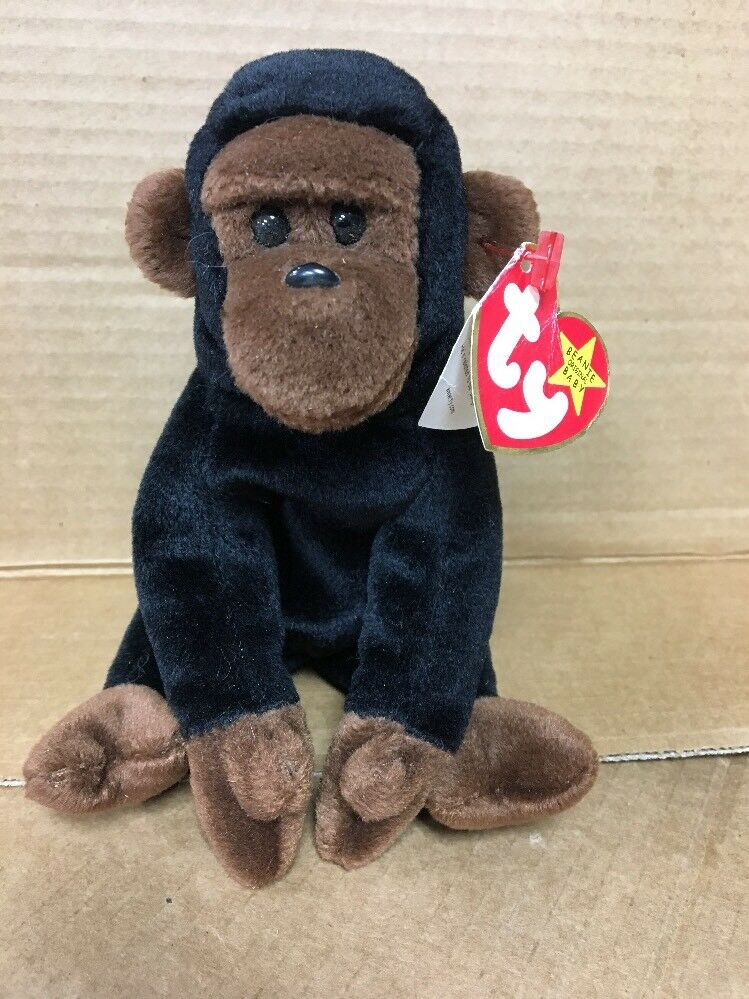 TY BEANIE BABY CONGO Rare with Errors