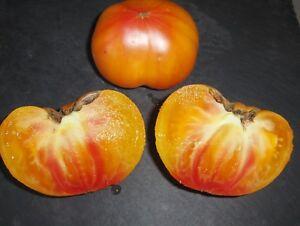 30-graines-Tomate-ANANAS-BIO