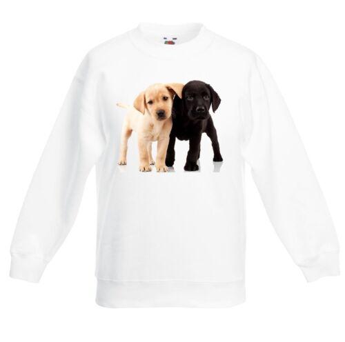 Labrador Cuccioli Children/'s Kids Unisex Felpa Maglione-Carino LAB DOG presenti