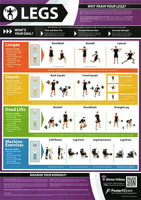 legs workout professional fitness training gym posterfit