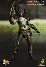 "1/6 Scale 14"" Hot Toys Predators Falconer Predator Box Set"
