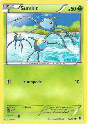 POKEMON CARD XY PRIMAL CLASH SURSKIT 13//160