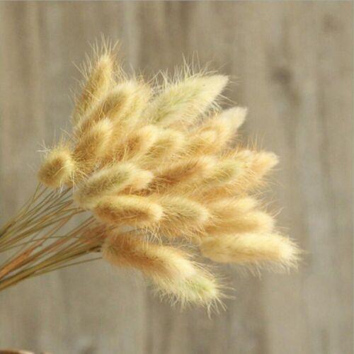 Pampas Grass Artificial Flowers High Quality Christmas Autumn 30Pcs//lot