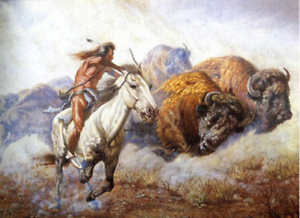 Buffalo hunting safari
