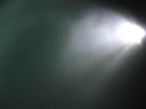 1000 Lumen WHITE Drain Plug Light 12V Underwater Boat Fishing Brass 9 LED USA