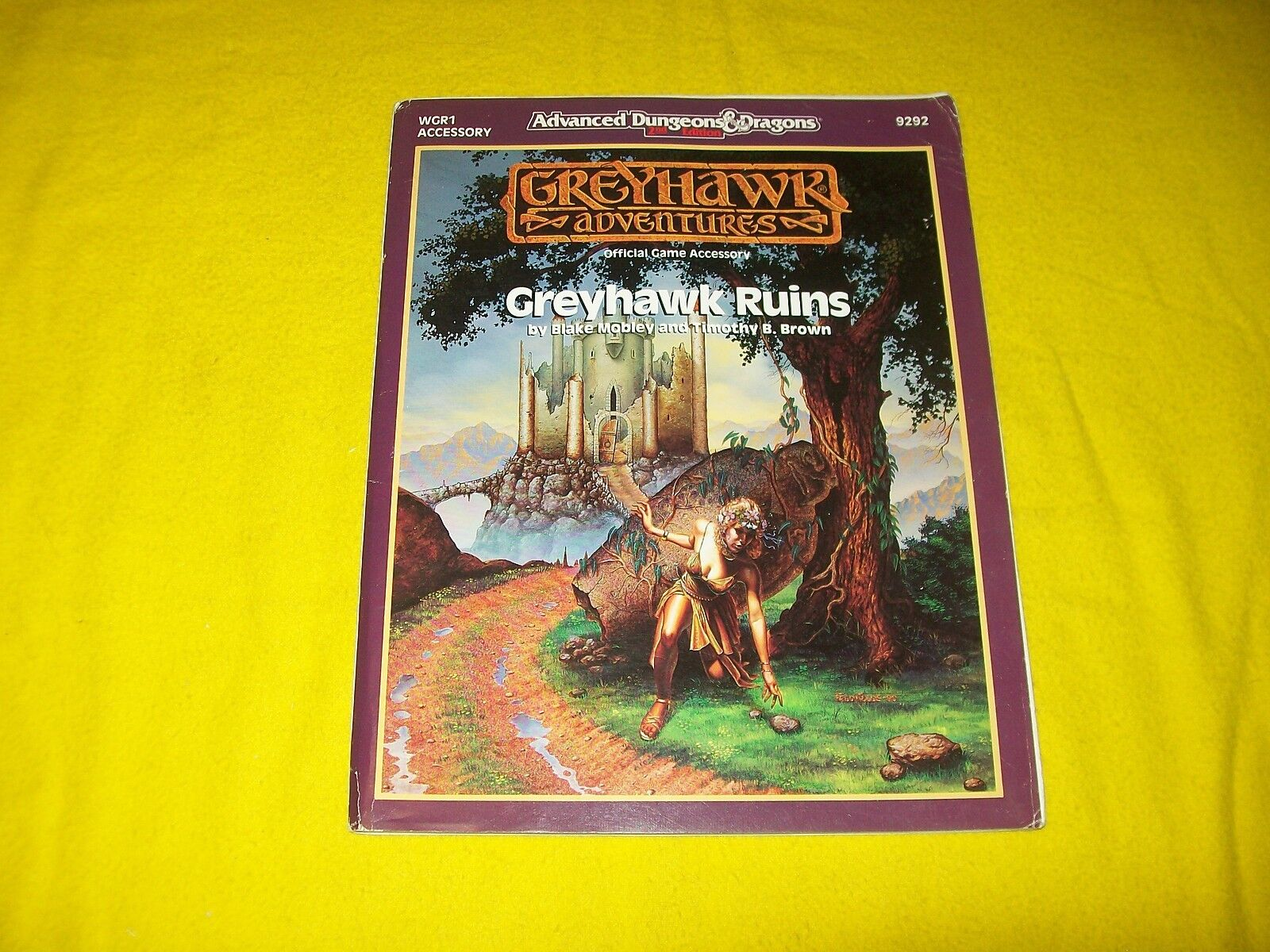 WGR1 GREYHAWK RUINS DUNGEONS & DRAGONS ADVENTURES AD&D TSR 9292 - 3