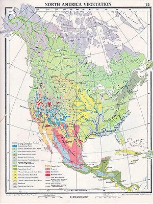 1961 Map North America Vegetation Forest Agriculture Desert Ebay