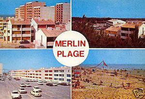 85-cpsm-MERLIN-Plage