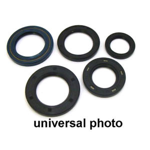 Oil Seal Kit For 1987 Kawasaki KX250 Offroad Motorcycle Winderosa 822285