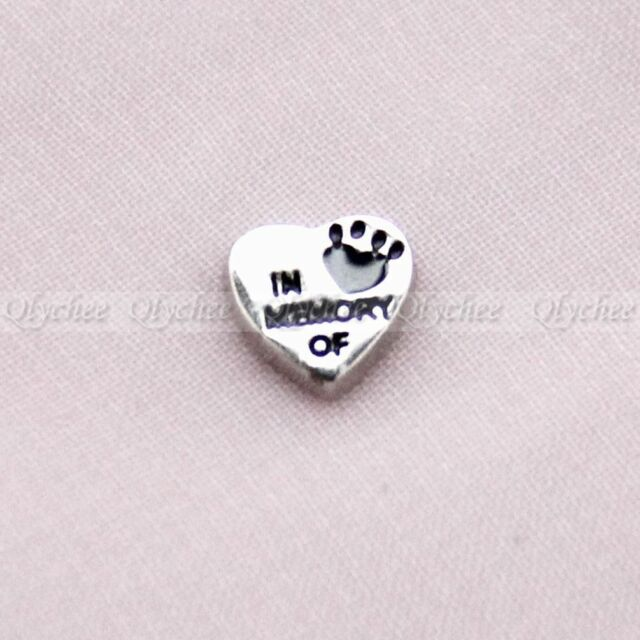 Floating Charm In Memory of Pet for Glass Living Memory Lockets Free Shipping