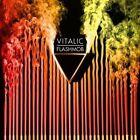 Flashmob by Vitalic (Vinyl, Sep-2009, 2 Discs, Different (UK))