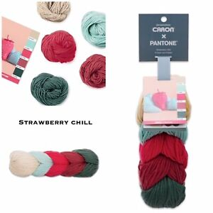 NEW-Caron-X-Pantone-Merino-Wool-Yarn-Strawberry-Chill-RETIRED-SOLD-OUT-LIMITED