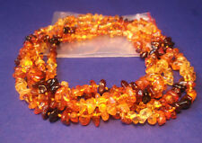 Lot Wholesale Of 5 Genuine Baltic Amber Baby Necklaces Mixed Color