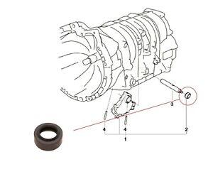 New Seal Selector Rod AUTO Gearbox BMW X5 E53 X3 E83 2.5i 3.0i M54