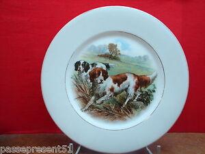 Jolie-ancienne-assiette-en-porcelaine-decor-chiens-de-chasse-epagneuls