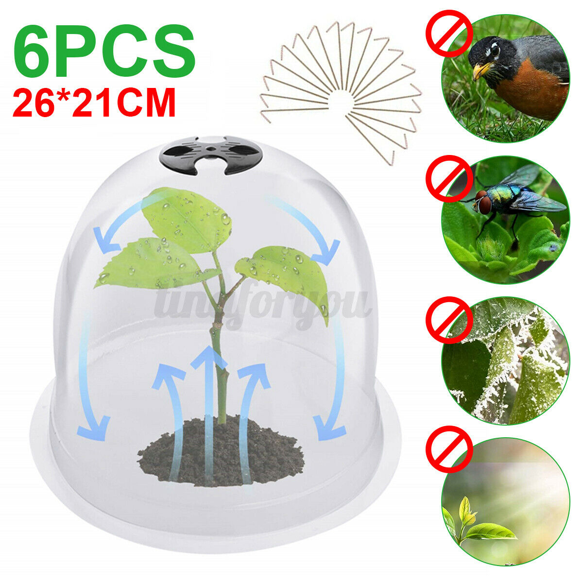6 Pack Large Cloche Bell Cover Plant Garden Frost Greenhouse Pest Protection