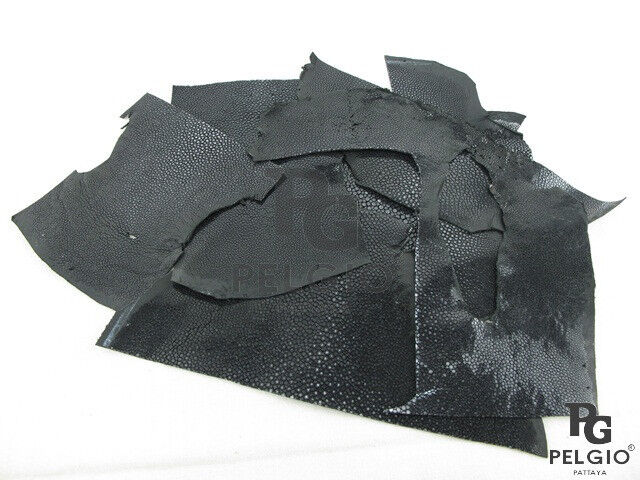 PELGIO Real Genuine Python Snake Skin Leather Hide Pelt Scraps 100 gram Natural
