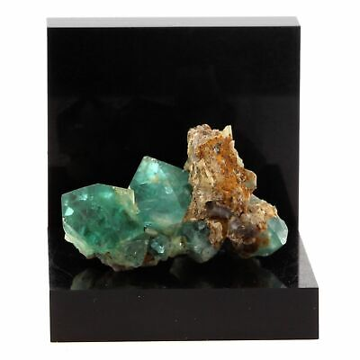Glorious Fluorite Rogerley Mine Uk United Kingdom Delicious In Taste Stanhope 109.7 Ct
