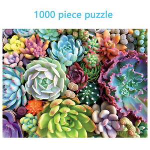 1000 Piece Succulent Spectrum Plants Puzzle Adult Children Holiday Gift Puzzles