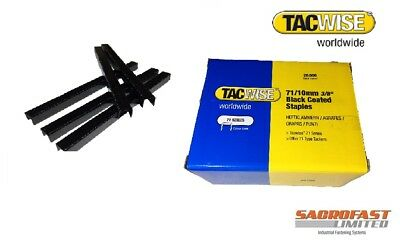 TACWISE 71//10 STAINLESS STEEL STAPLES BOX 20,000