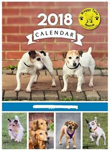 Waggy-Tails-Rescue-2018-Charity-Calendar
