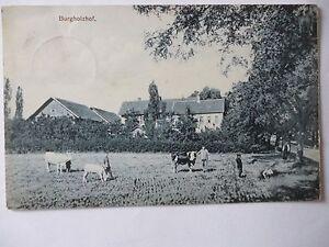 Ansichtskarte Burgholzhof um 1900? - Eggenstein-Leopoldshafen, Deutschland - Ansichtskarte Burgholzhof um 1900? - Eggenstein-Leopoldshafen, Deutschland