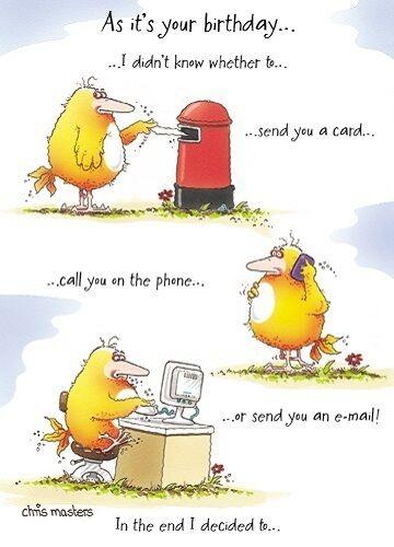 Funny Humour Birdwit Birthday Greeting Card