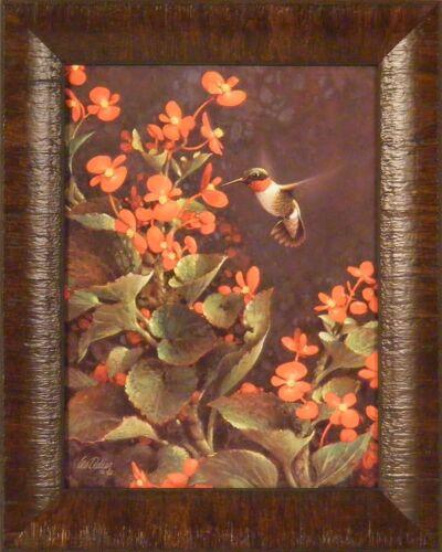 SUMMER JEWEL by Les Didier FRAMED PRINT 12x15 Hummingbird Flowers Birds