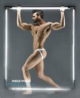 Modus Vivendi Limited Edition Men's Geo Lace Mesh Semi-transparent Jockstrap