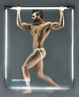 Modus Vivendi Limited Edition Men's Geo Lace Mesh Semi-transparent Jockstrap