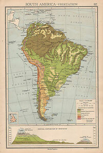 Andes Mountains Peru Map.1942 Map South America Vegetation Andes Mountain Heights Bolivia