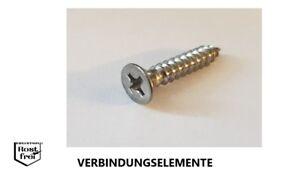 C-H 100 Edelstahl V2A Linsensenkkopf Blechschrauben DIN 7983 A2 4,2x19