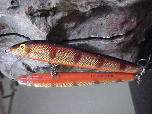 """BASS AC Model 450 Shiner 4 1//2/"""" Wood Shallow Minnow in GOLD PERCH//ORANGE BELLY"""