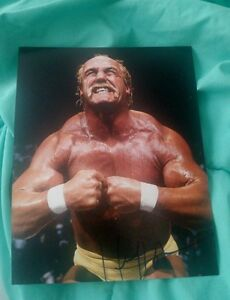 HULK-HOGAN-SIGNED-8X10-PHOTO-HOLLYWOOD-HULKAMANIA-W-COA-PROOF-RARE-WOW