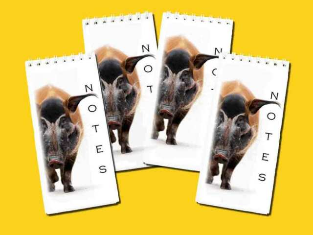 Shih Tzu Dog Pack of 4 Small Slim Note Pads Jotters Gift Set