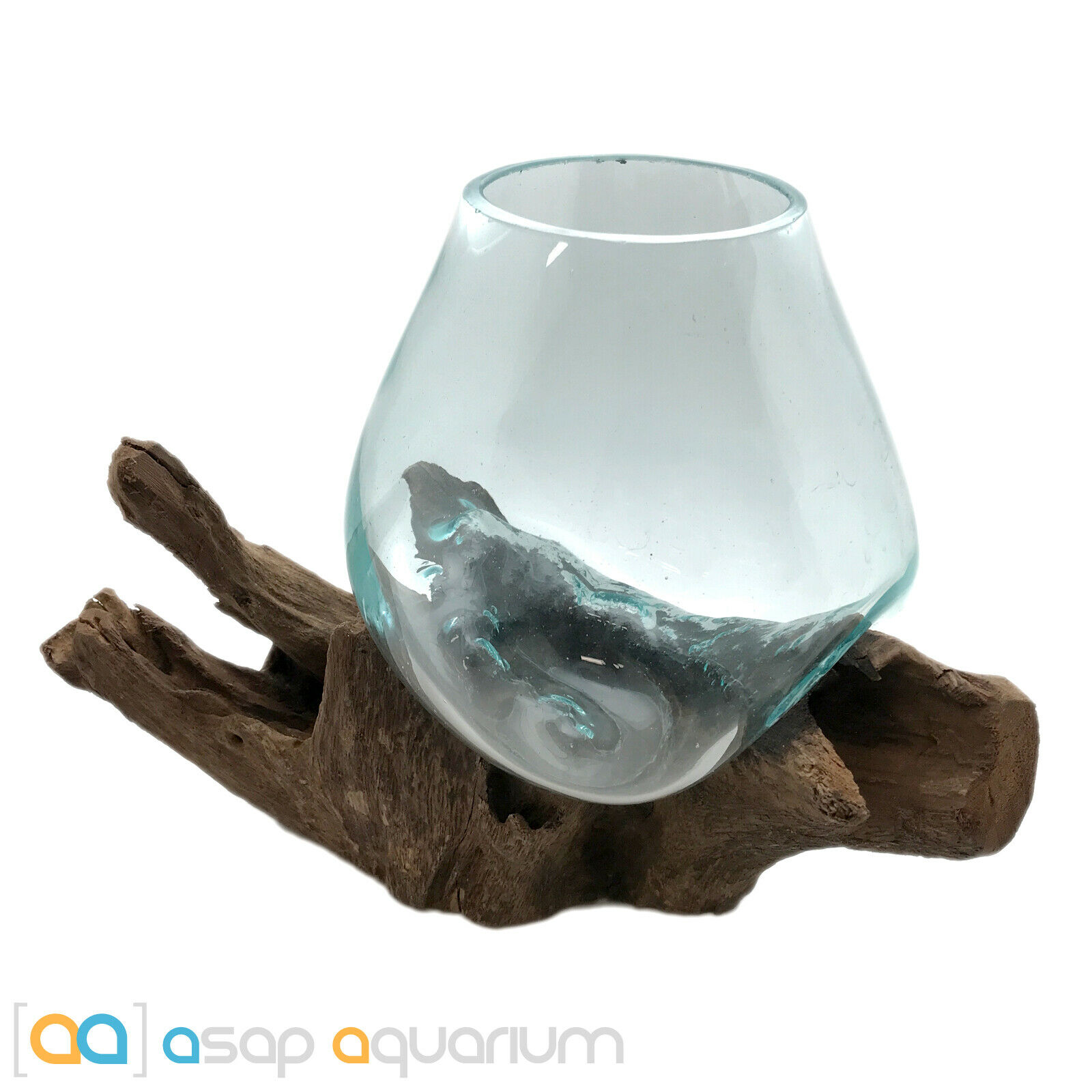 Betta Fish Bowl Unique Molten Glass on Teak Driftwood M192 Free USA Shipping