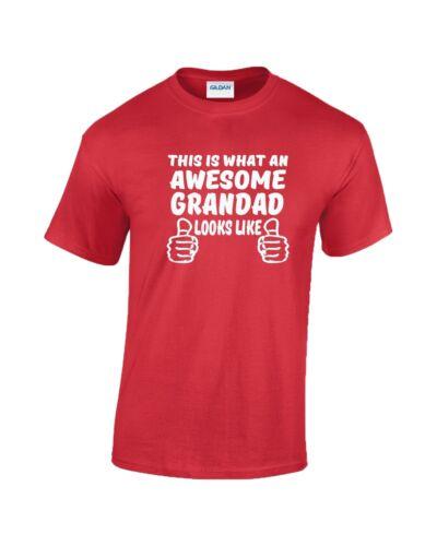 Awesome Grandad T Shirt  New Funny Christmas Gift