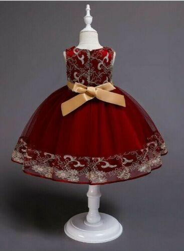 Childrens Girls Beautiful Formal Fancy Elegant Embroidered Tulle Tutu Dress ZG9