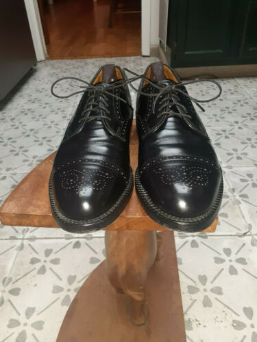 Allen Edmond Shoes  Lexingtons