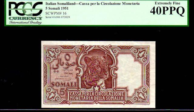 "ITALIAN SOMALILAND P16 ""LEOPARD"" 1951 5 SOMALI- ROMA GRADED PCGS 40 PPQ!"
