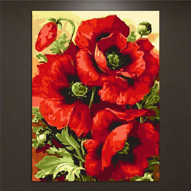 Diy poppy flower oil painting by numbers acrylic drawing on canvas diy poppy flower oil painting by numbers acrylic drawing on canvas home decor mightylinksfo