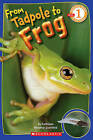 From Tadpole to Frog by Kathleen Weidner Zoehfeld (Paperback / softback)